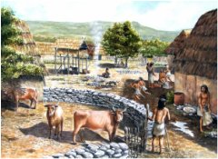 neolithic revolution pros and cons